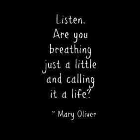 mary-oliver - Listen